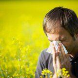 Алергічна реакція навесні у людини