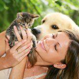 Анімалотерапія лікування за допомогою тварин