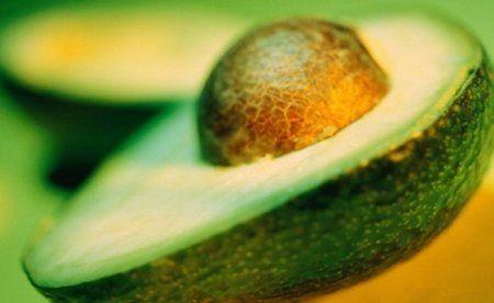 Авокадо користь і шкода