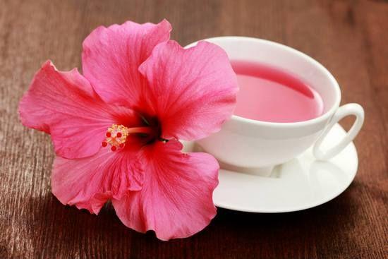 Чай каркаде: користь і шкода для жінок і чоловіків. Відгуки про вживання червоного чаю із суданської троянди