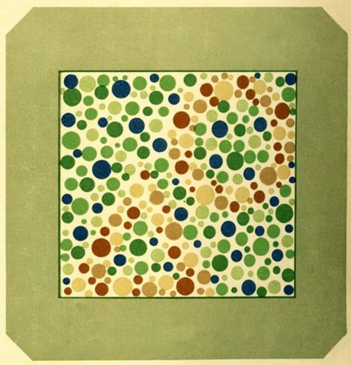 voditelskie-prava-i-daltonizm-02