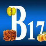 Функції вітаміну в17 в організмі людини