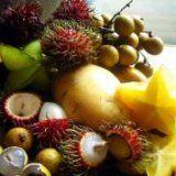 Екзотичні фрукти для здоров'я людини