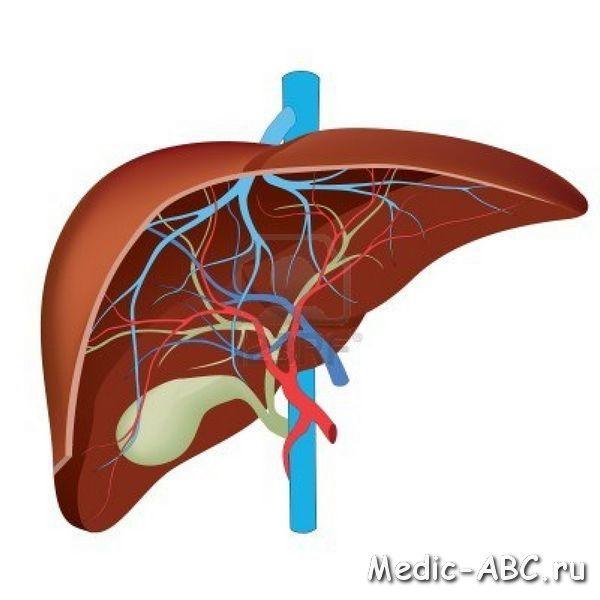 Як лікувати цироз печінки