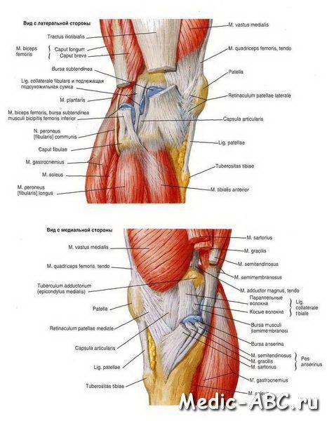 Як лікувати розтягнення зв'язок коліна