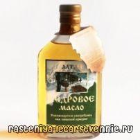 Кедрова олія - корисні властивості, застосування