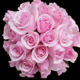 Косметика з пелюсток троянд своїми руками