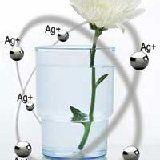Лікувальні властивості срібла і срібної води