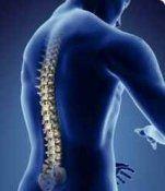 Лікування хребетних гриж народними засобами