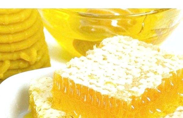 Мед з пергою корисні властивості і протипоказання