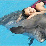 Метод лікування захворювань дельфінотерапією