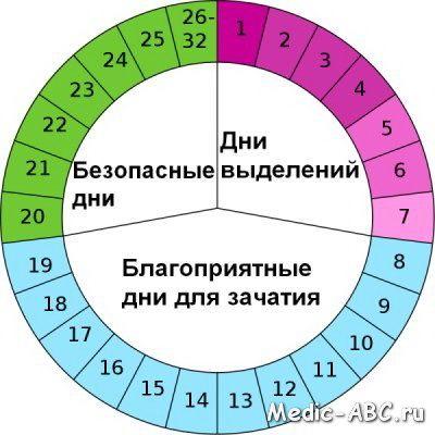 Чи можна завагітніти на дванадцятий день циклу