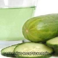 Огірки, огірковий сік - користь і шкода для організму