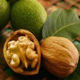 Корисні для здоров'я властивості волоського горіха