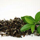 Корисні властивості чаю для організму