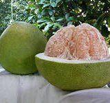 Корисні властивості фрукта помело