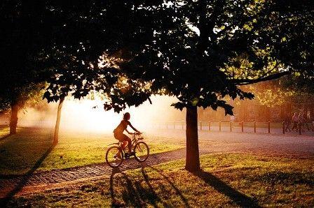 Користь їзди на велосипеді
