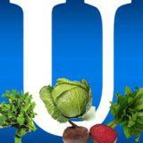 Користь вітаміну u для здоров'я людини
