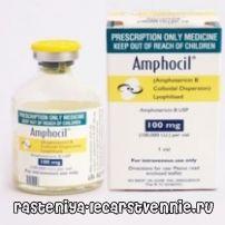 Протигрибкові антибіотики: лікування системних мікозів амфоціл