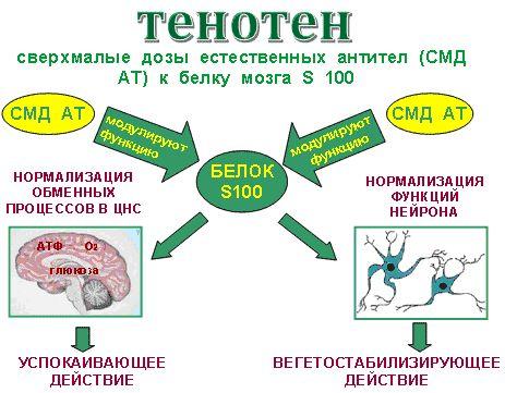 Тенотен застосування проти стресу