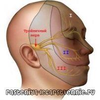 Трійчастий нерв. Симптоми. Лікування. Розташування. Народна медицина