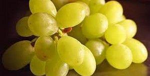 Виноград. Калорійність, користь, дієти