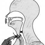 Відновлення голосу після видалення гортані
