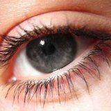 Здоров'я око людини і зір