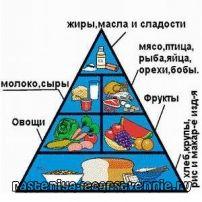 Здоров`я і здорове харчування, значення харчування для здоров`я людини