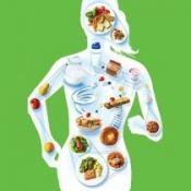 Значення раціонального харчування для здоров`я людини